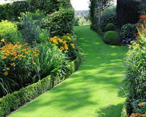 Thiết kế thảm cỏ sân vườn
