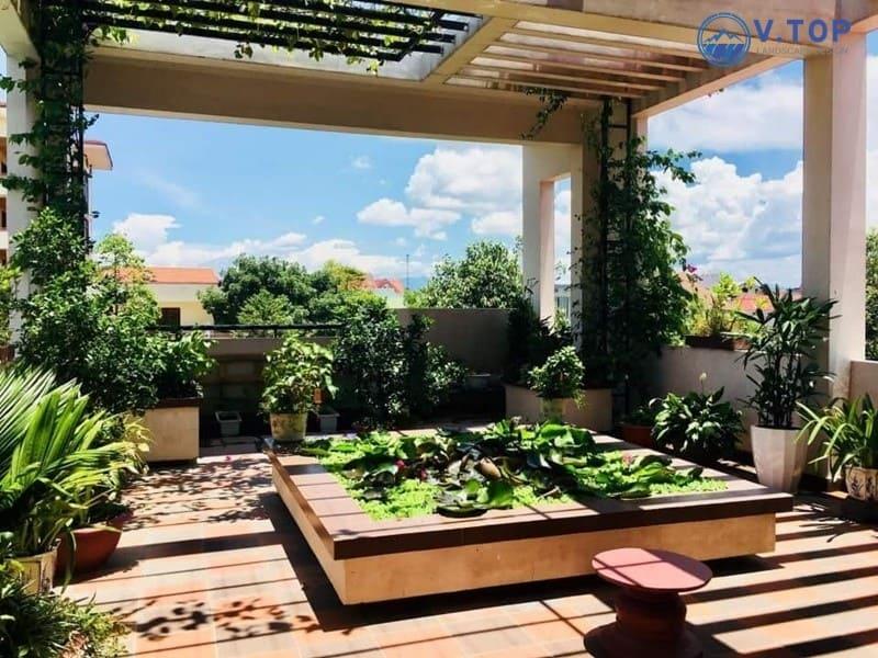 Mẫu thiết kế sân vườn đơn giản với đa dạng hoa cỏ